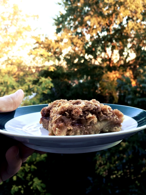 apple crisp salted caramel bar